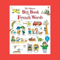 BIG BOOK OF FRENCH WORDS USBORNE
